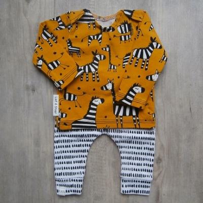 Picture of set Zebra 1 maat 44